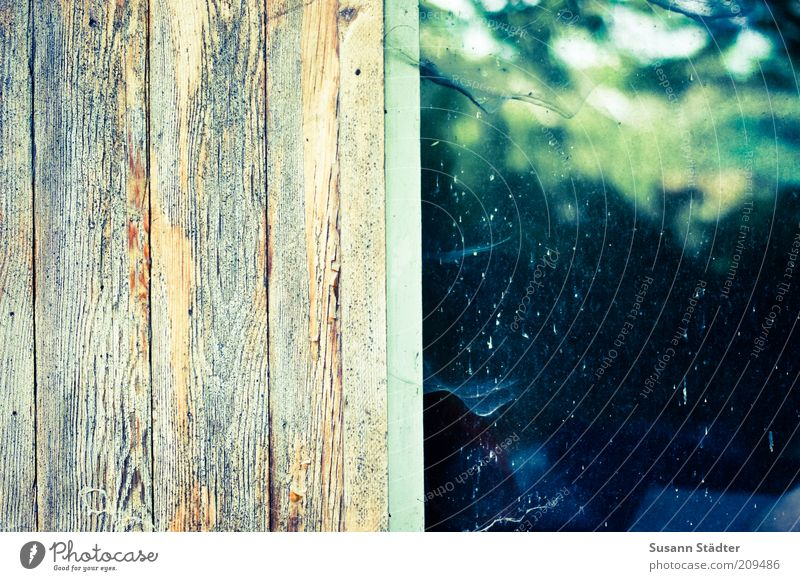Window Wood Hut Wood grain Spider's web Flake off Colorless House (Residential Structure) Wall (building) Window frame Cobwebby Wall panelling