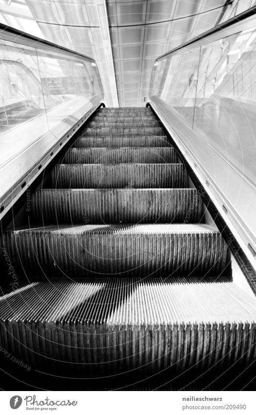 upward Deserted Train station Stairs Escalator Cold Gray Black White Black & white photo Interior shot Day Shadow Deep depth of field Upward Glass Modern