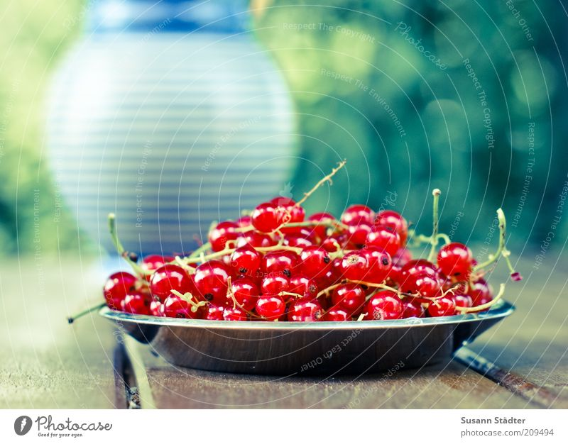 Glittering Food Fruit Stripe Delicious Harvest Plate Furrow Berries Vase Dessert Brunch Buffet Summery Dish Nutrition