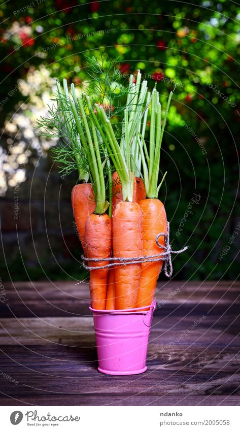 Fresh carrots Vegetable Nutrition Eating Vegetarian diet Diet Garden Table Nature Plant Leaf Wood Natural Green Pink ripe Useful agriculture iron Organic orange