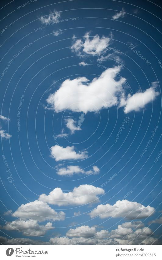 Nature Beautiful Sky White Blue Clouds Above Gray Air Wind Weather Environment Tall Esthetic Soft Climate