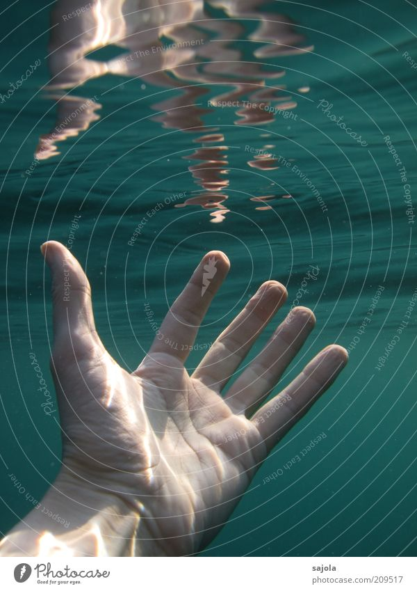 within reach Human being Hand Elements Water Ocean Green Grasp Near Life line Fingers Breach Colour photo Underwater photo Neutral Background Day Reflection