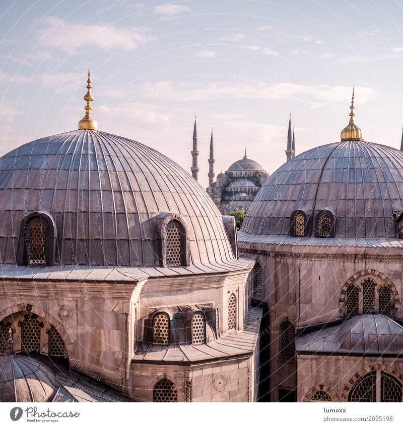 major Istanbul Turkey Europe Town Manmade structures Building Architecture Facade Domed roof Mosque Hagia Sophia Blue Mosque Tourist Attraction Landmark