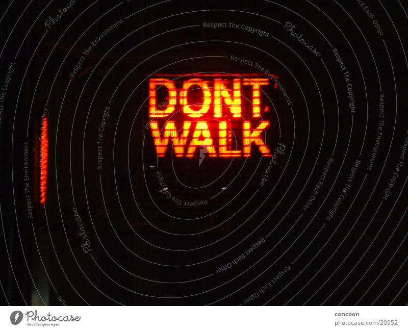 Don't walk! Traffic light Red New York City Leisure and hobbies Pedestrian crossing USA