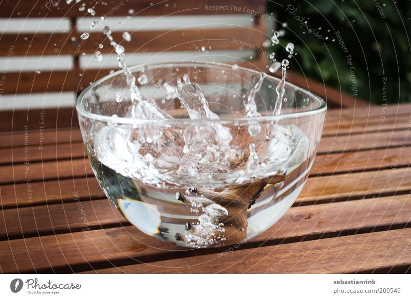 Water Glass Wet Drops of water Cleaning To fall Bowl Donkey Adversity Strike Splash Splash of water Direct hit Glass bowl