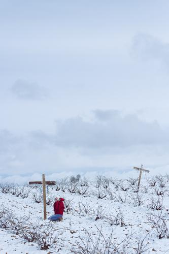 Young woman praying in a graveyard at winter Human being Feminine Youth (Young adults) 1 18 - 30 years Adults Nature Landscape Sky Clouds Horizon Winter Climate