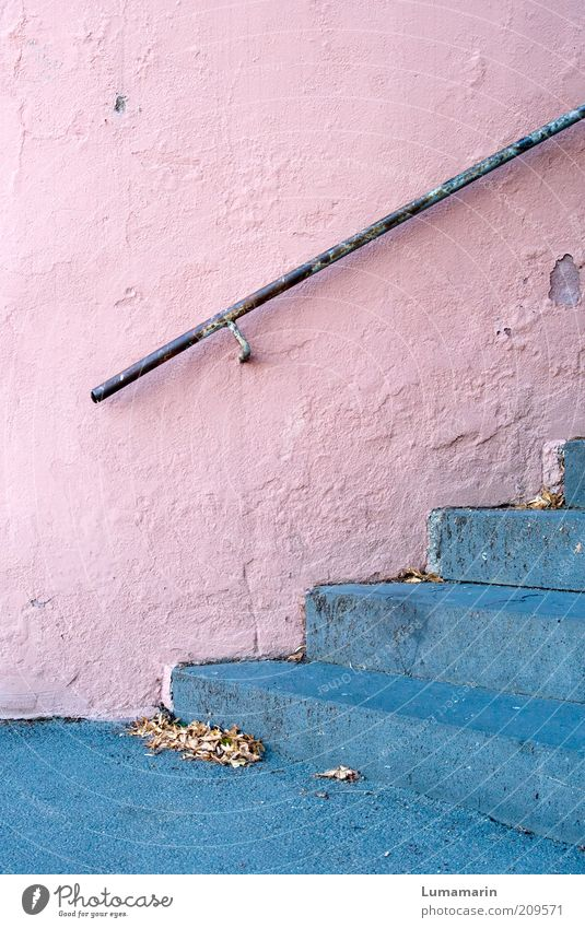 Old Blue Beautiful Leaf Colour Cold Wall (building) Gray Lanes & trails Building Wall (barrier) Metal Moody Bright Pink Stairs