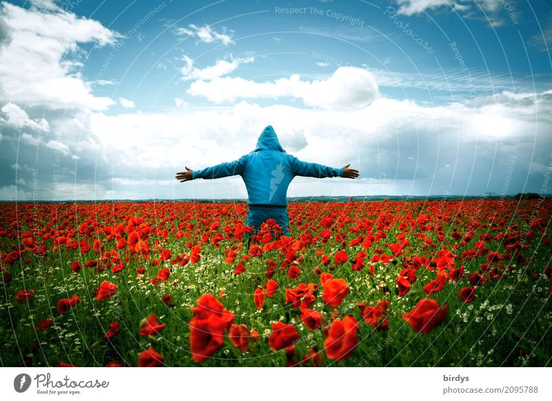 Human being Sky Youth (Young adults) Blue Summer Colour Young man Flower Red Clouds Calm Far-off places Adults Blossom Happy Exceptional