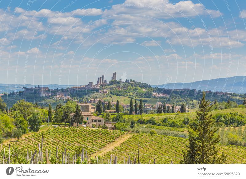 Panoramic view on San Gimignano Tuscany Italy Landscape Village Town Old town Tower Architecture Historic medieval manhattan World heritage sex towers Winery