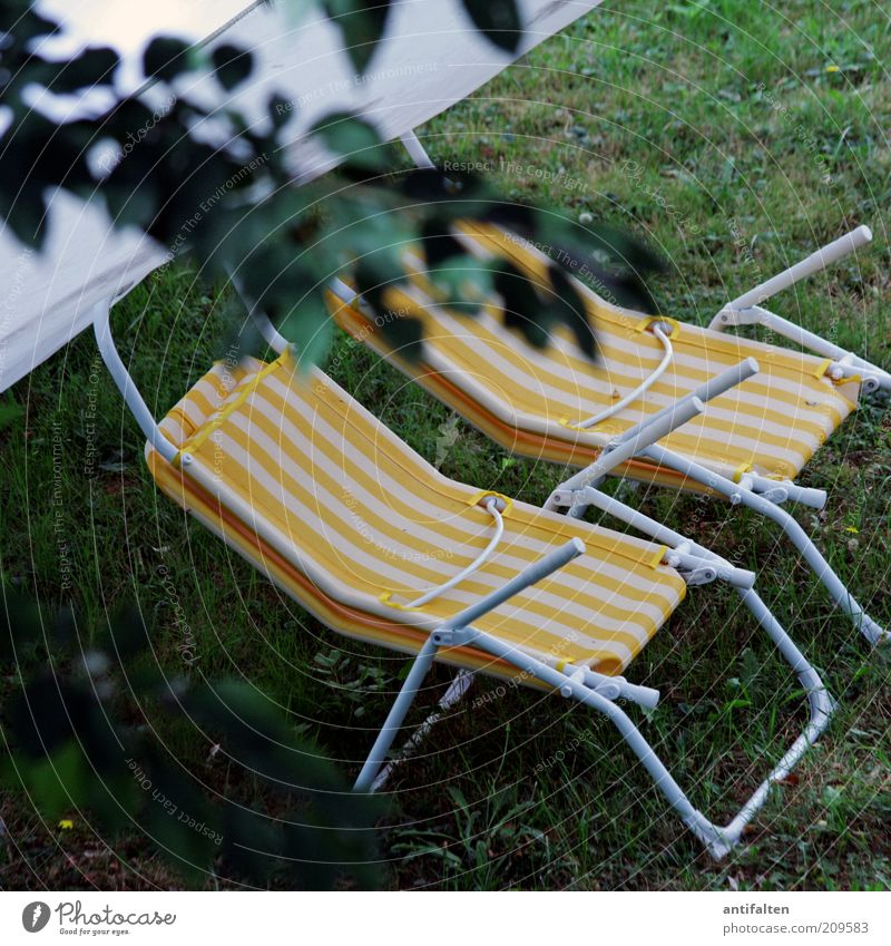 Place in the green Tourism Summer Summer vacation Nature Plant Grass Garden Garden chair Deckchair Relaxation Yellow Green Leisure and hobbies Vacation & Travel
