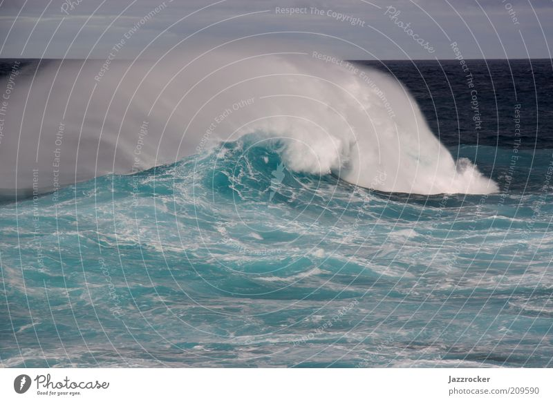 Atlantic Wave Vacation & Travel Freedom Summer Ocean Waves Environment Nature Water Wind Gale Blue Green Colour photo Multicoloured Exterior shot Day