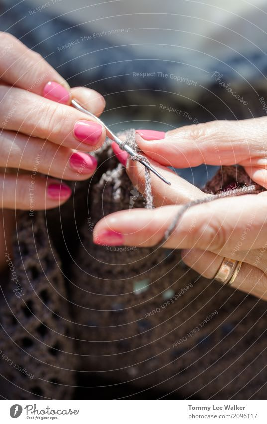 Working old hands Design Relaxation Leisure and hobbies Knit Decoration Work and employment Craft (trade) Woman Adults Grandmother Hand Colour Creativity