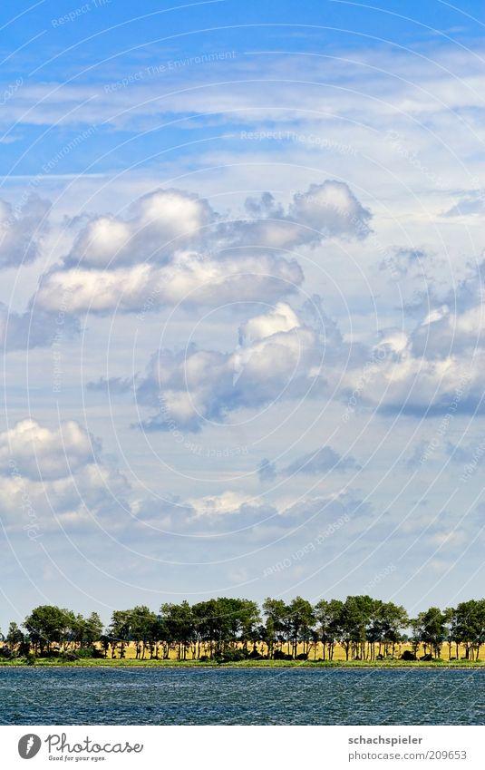 Nature Sky White Ocean Blue Summer Clouds Landscape Coast Environment Baltic Sea Beautiful weather Rügen