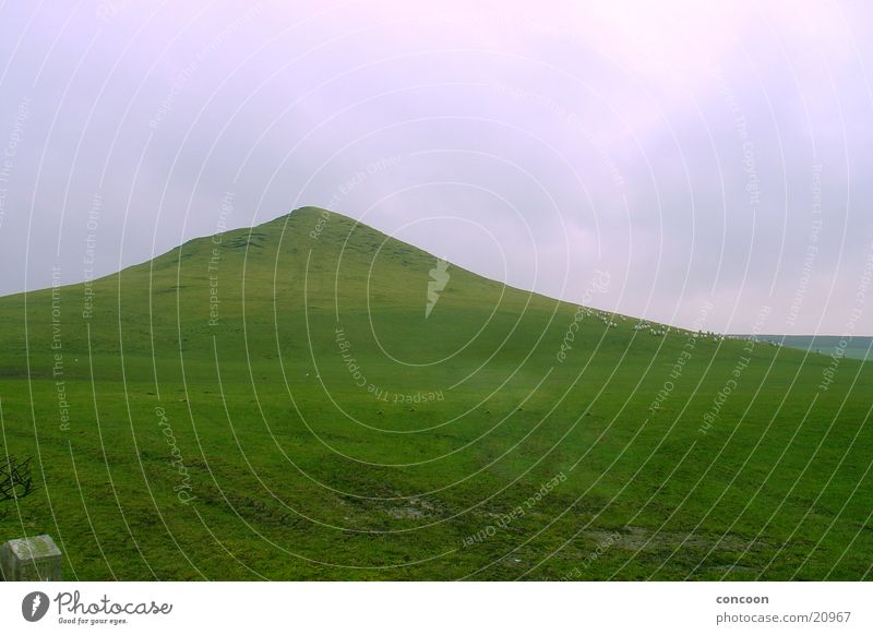 Green Meadow Grass Mountain Lawn Hill England Great Britain
