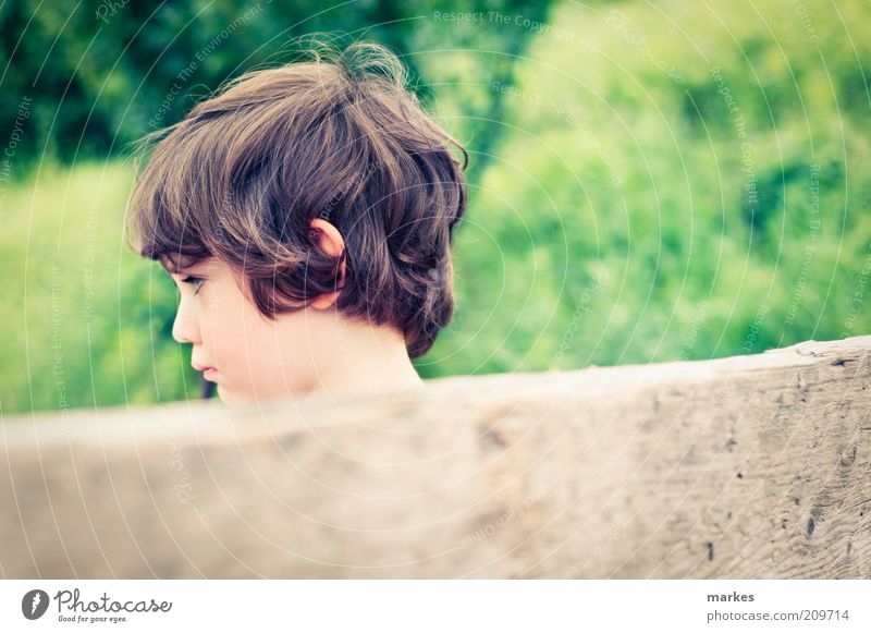 sommerzeit Human being Child Summer Face Boy (child) Emotions Wood Moody Sit Retro Authentic Natural Infancy Sunrise Aggravation Defiant