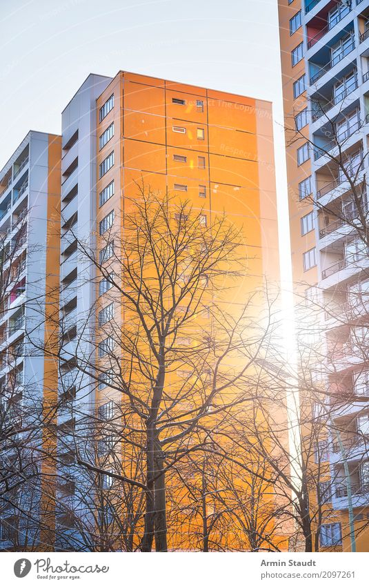 prefabricated building Lifestyle Style Design Flat (apartment) House (Residential Structure) Environment Sunrise Sunset Spring Winter Beautiful weather Tree