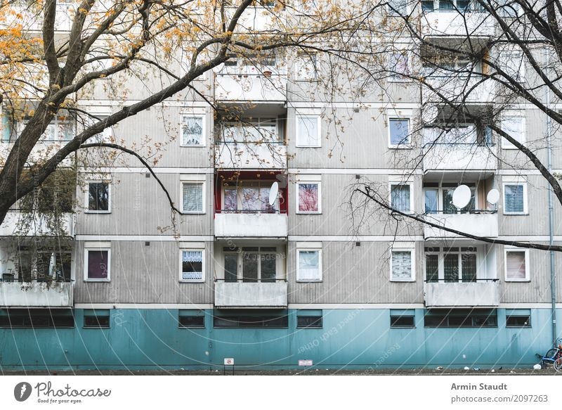 Old Town Tree House (Residential Structure) Dark Environment Lifestyle Berlin Style Gray Moody Design Flat (apartment) High-rise Gloomy Authentic