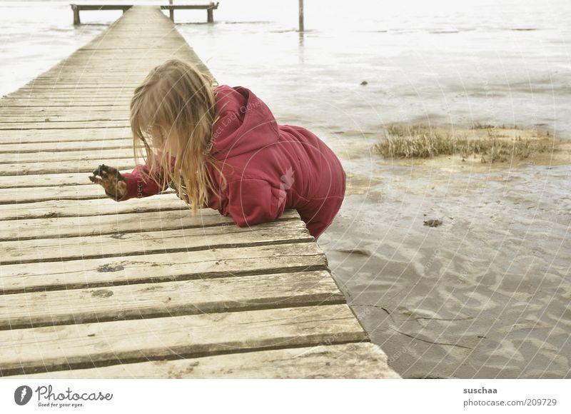 Human being Child Water Girl Ocean Beach Joy Environment Life Playing Freedom Wood Sand Coast Dream Infancy