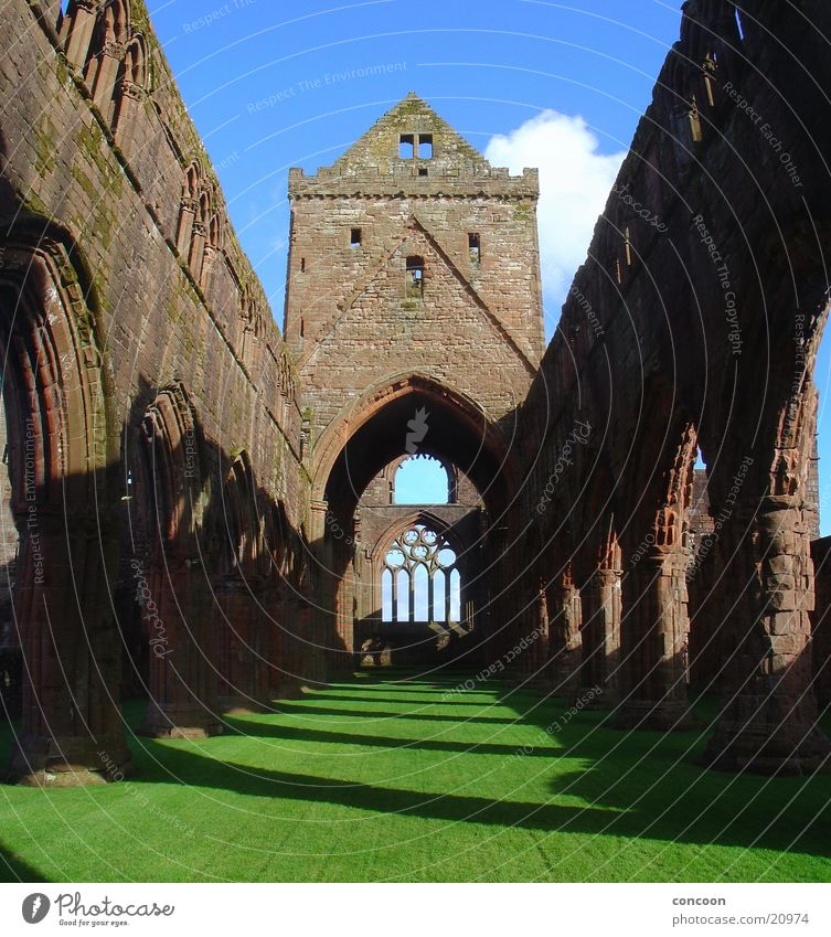 Sweetheart Abbey Scotland Great Britain Monastery Ruin Decline Light Spring Green Meadow Europe New Abbey Religion and faith Shadow Old Sun
