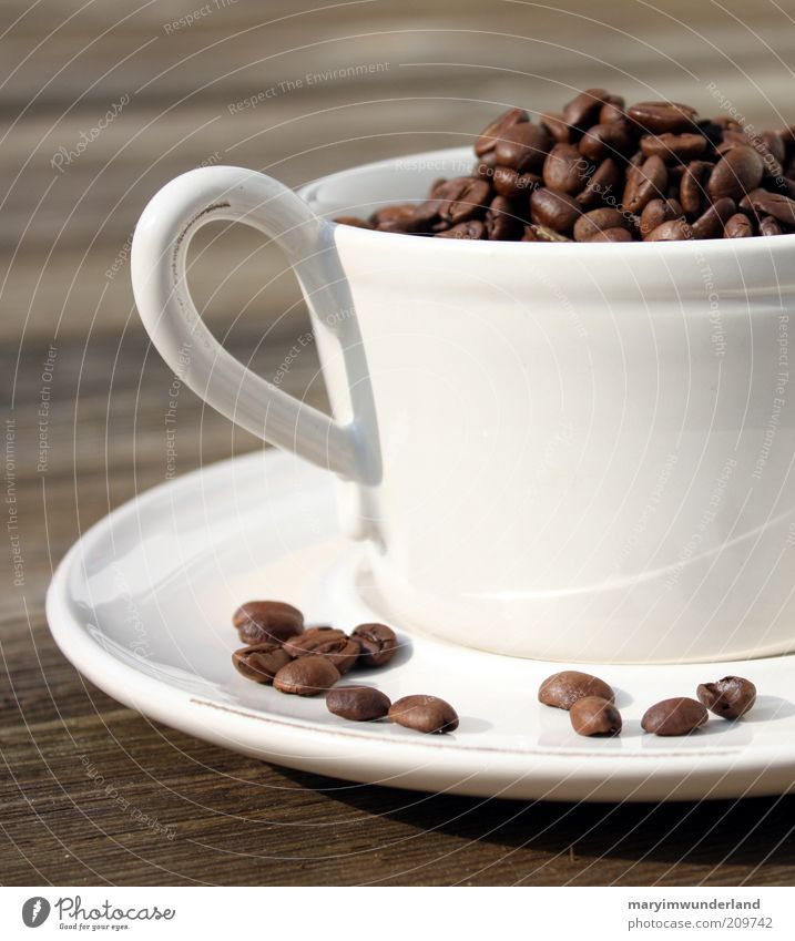 Relaxation Calm Warmth Wood Brown Contentment To enjoy Soft Coffee Many Well-being Hot Harmonious Fragrance Cup Senses