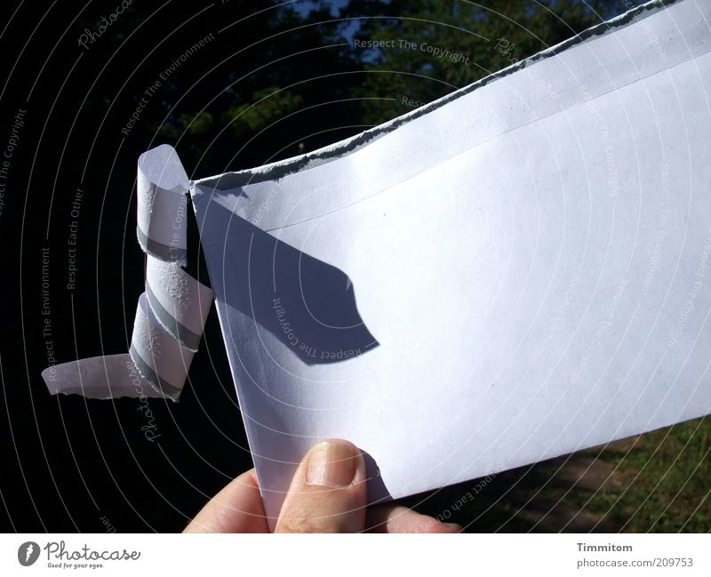 White Paper Communicate Open Letter (Mail) Envelope (Mail) Copy Space Stationery Addressee