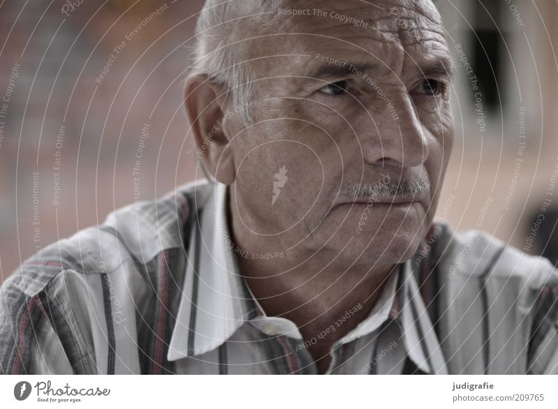 Human being Man Face Calm Senior citizen Head Think Skin Curiosity Listening Shirt Portrait photograph Wisdom Moustache Understanding Looking