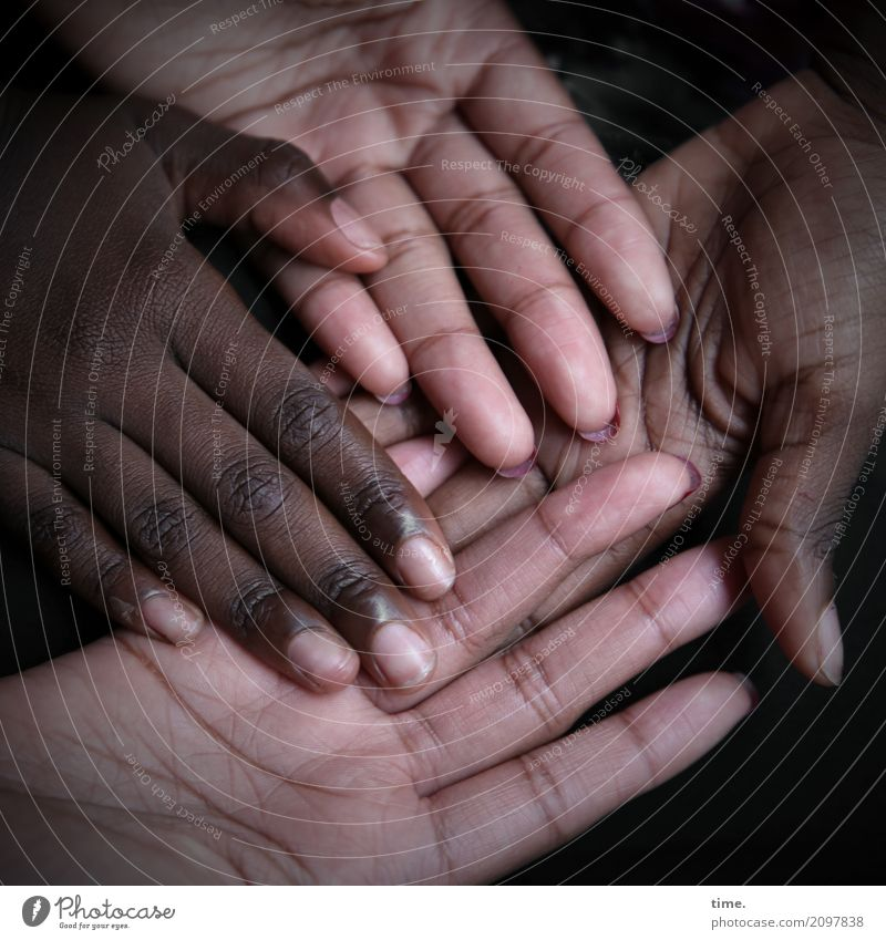 Lifelixir | Caring, Diversity and Humanity Feminine Skin Hand Fingers 2 Human being Line To hold on Lie Together Natural Beautiful Contentment