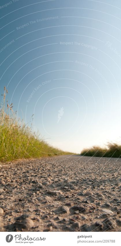 Nature Beautiful Summer Joy Calm Happy Lanes & trails Warmth Sand Landscape Bright Field Fresh Happiness To go for a walk