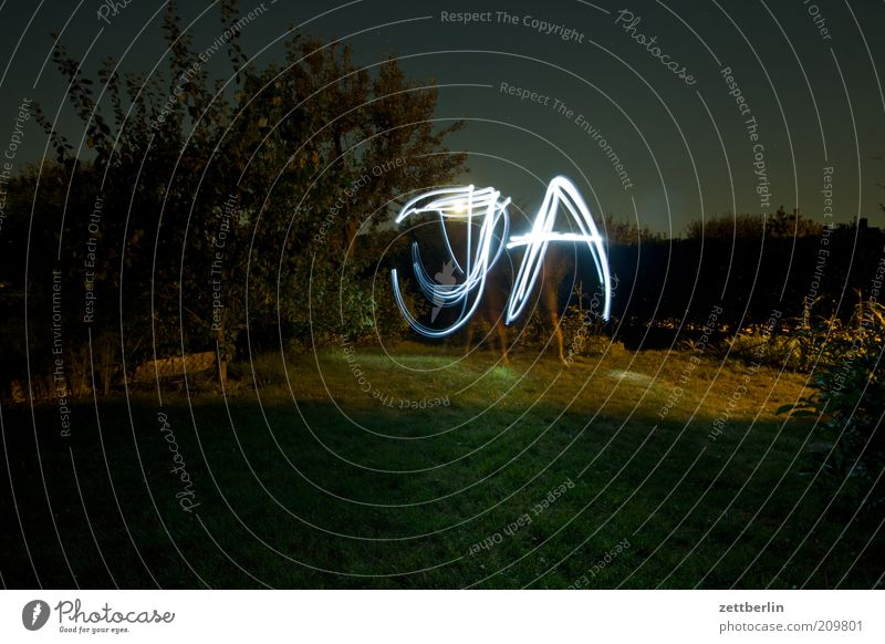 yes Garden Plant Tree Grass Bushes Park Meadow Sign Characters Write Garden plot allotment garden vegatation Line Long exposure Typography Night Information