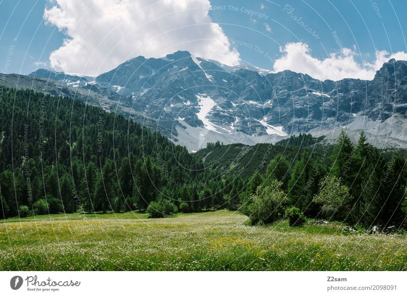 Sky Nature Vacation & Travel Blue Summer Green Landscape Relaxation Loneliness Clouds Calm Forest Environment Meadow Natural Rock