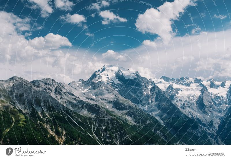 Ortles Nature Landscape Sky Clouds Beautiful weather Alps Mountain Peak Glacier Gigantic Tall Cold Blue Loneliness Freedom Idyll Climate Sustainability