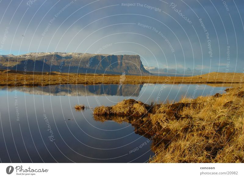 Beautiful Iceland Lake Grass Evening sun Calm Wall of rock Steep face Europe Reflection North