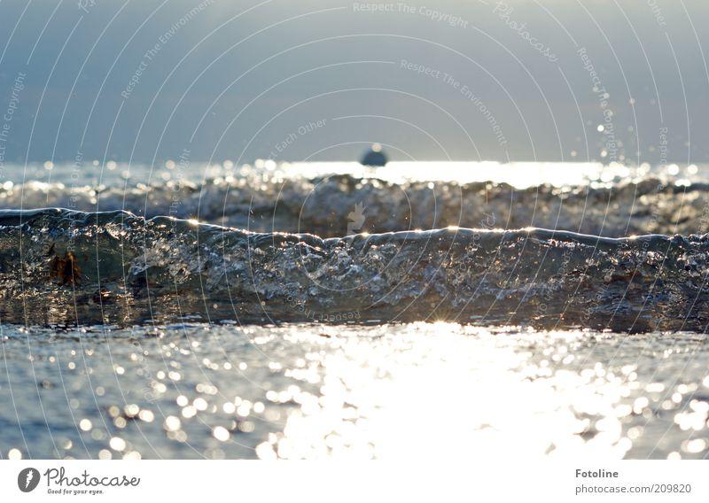 Nature Sky Ocean Summer Warmth Bright Coast Waves Environment Wet Horizon Near Natural Dynamics Baltic Sea Surf