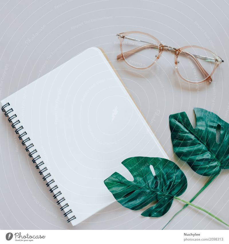 Flat lay of minimal workspace desk Lifestyle Style Design Business Art Nature Plant Spring Leaf Fashion Eyeglasses Paper Simple Bright Modern Above Gray Green