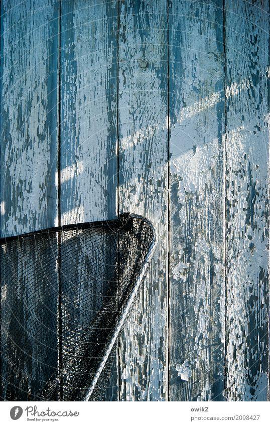 closed season Gardenhouse Wooden wall Wall (barrier) Wall (building) Facade Landing net Net Fishery Metal Plastic Wait Old Threat Trashy Dry Blue Black