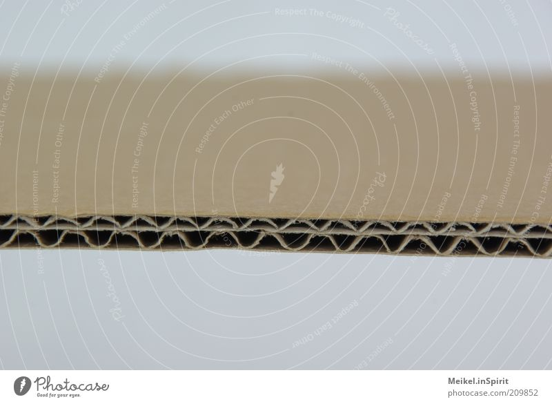 Background picture Paper Arrangement Good Strong Fat Cardboard Quality Macro (Extreme close-up) Line Packaging Precision Average Stability Undulation Wavy line