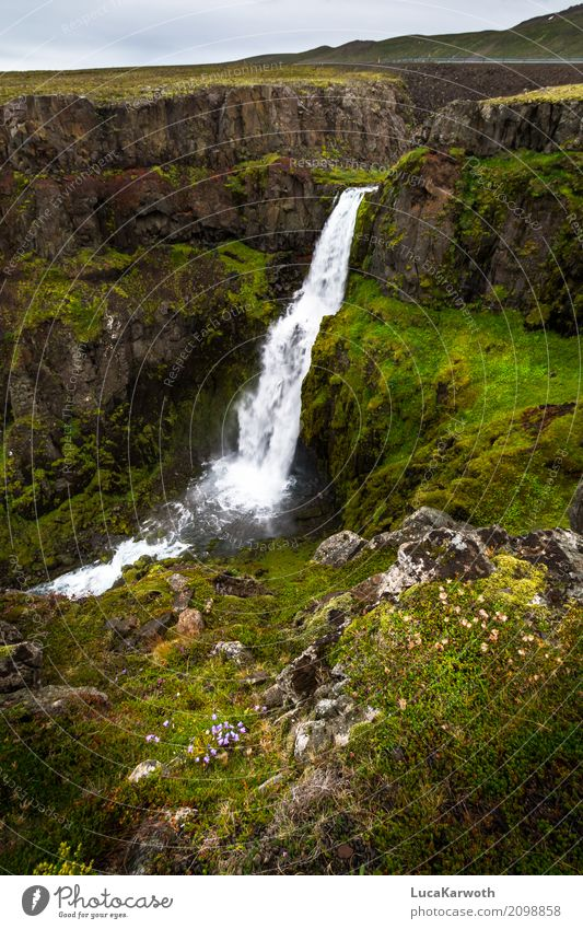 Waterfall Iceland Environment Nature Landscape Plant Weather Flower Grass Bushes Moss Rock Mountain Bay Deserted Tourist Attraction Street Moody