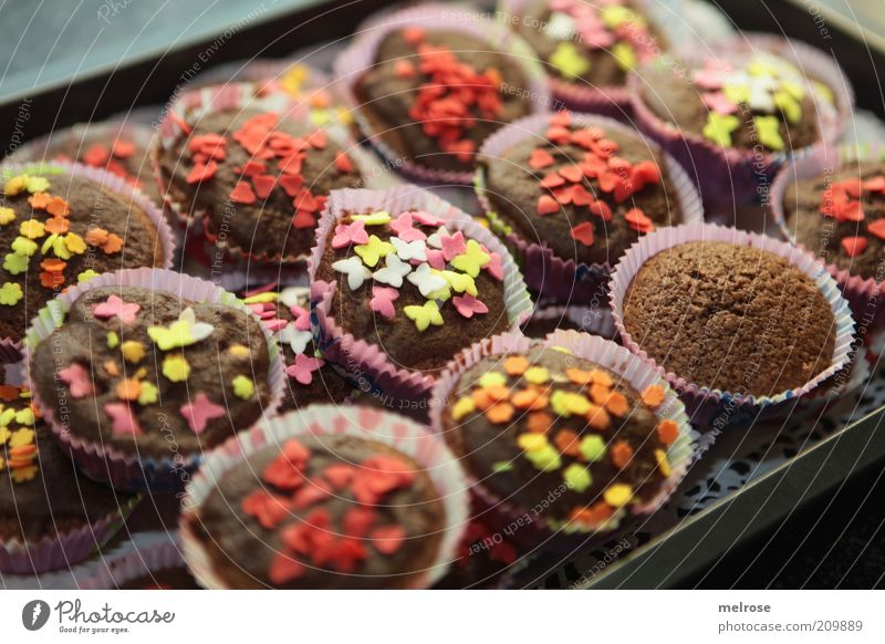 ready for the party Food Dough Baked goods Cake Candy Chocolate Sweet Brown Muffin Granules Chocolate brown Food photograph Rich in calories Calorie