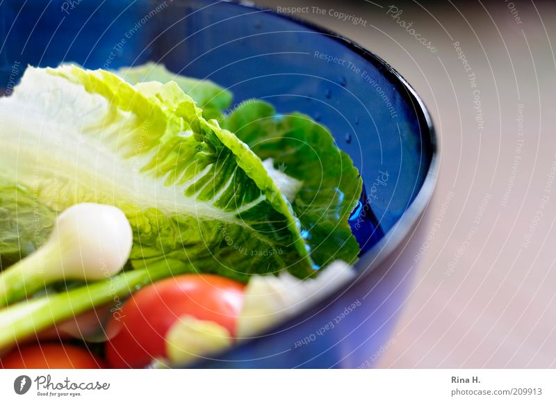 vitamins Food Vegetable Lettuce Salad Tomato Nutrition Organic produce Vegetarian diet Diet Bowl Healthy Blue Green Red Colour photo Copy Space right