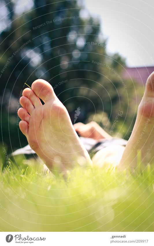 With peace and comfort Human being Man Adults Feet Sole of the foot 1 Environment Plant Earth Grass Meadow Garden Lie Green Calm Cozy Relaxation Dream