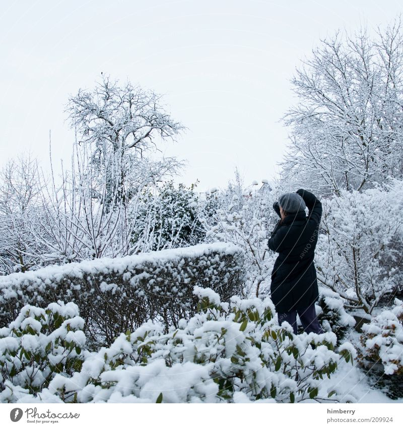 Human being Nature Tree Plant Winter Environment Life Cold Landscape Snow Emotions Garden Moody Park Art Weather