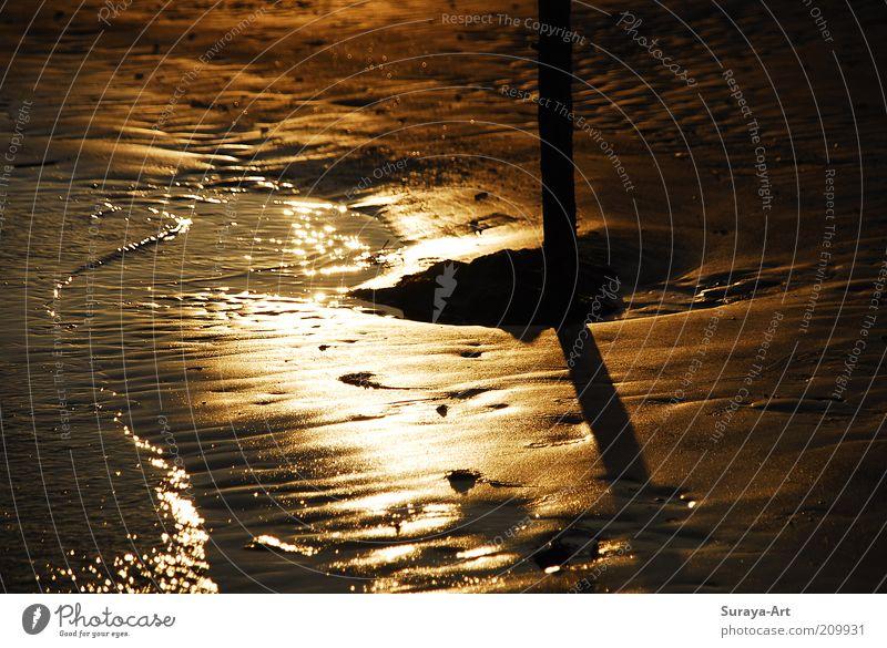 Nature Water Beautiful Ocean Summer Calm Dark Sand Landscape Glittering Wet Gold Island Soft Longing