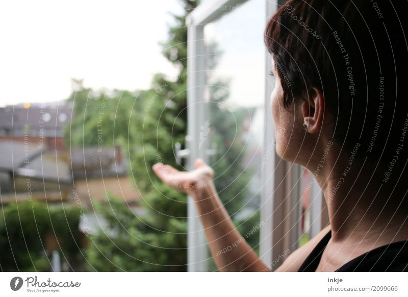 Human being Woman Summer Hand House (Residential Structure) Window Adults Life Environment Lifestyle Garden Head Flat (apartment) Living or residing