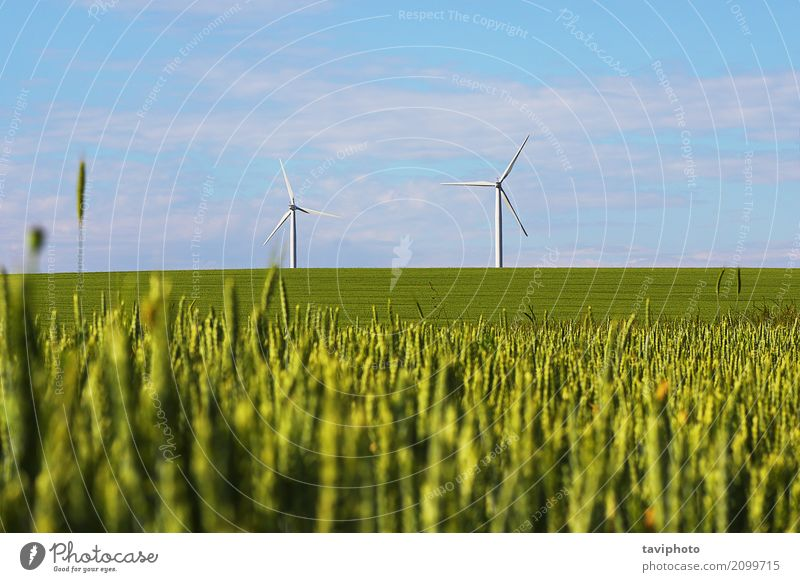 landscape with windmills for green electric power Industry Technology Environment Nature Landscape Sky Climate Wind Metal Sustainability Clean Blue Green Energy