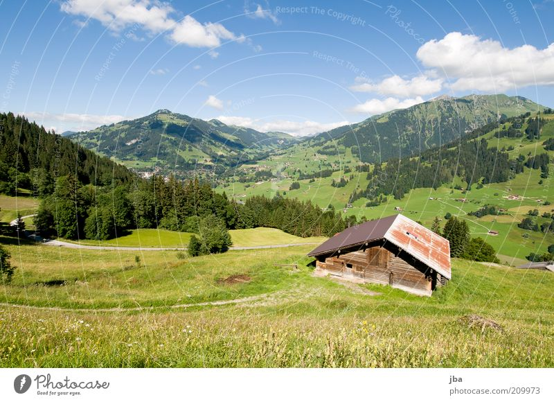 Nature Green Plant Vacation & Travel Summer Clouds House (Residential Structure) Relaxation Environment Landscape Meadow Mountain Freedom Wood Hiking Tourism