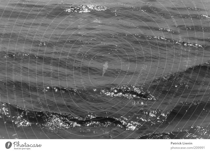 Water Ocean Dark Cold Movement Waves Glittering Wind Environment Wet Threat Climate Observe Exceptional Discover Fluid