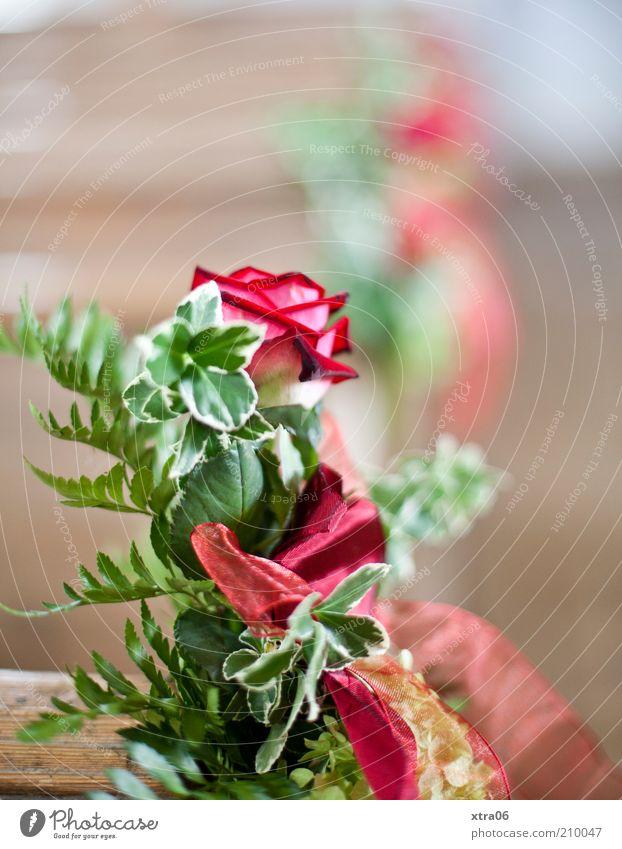 Beautiful Emotions Happy Romance Rose Bouquet Anticipation Loyalty Foliage plant Joy Feasts & Celebrations Flower