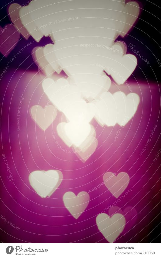 love Art Heart Love Romance Longing Red Violet Many Heart's content With love Background picture Graph Symbols and metaphors Colour photo Experimental