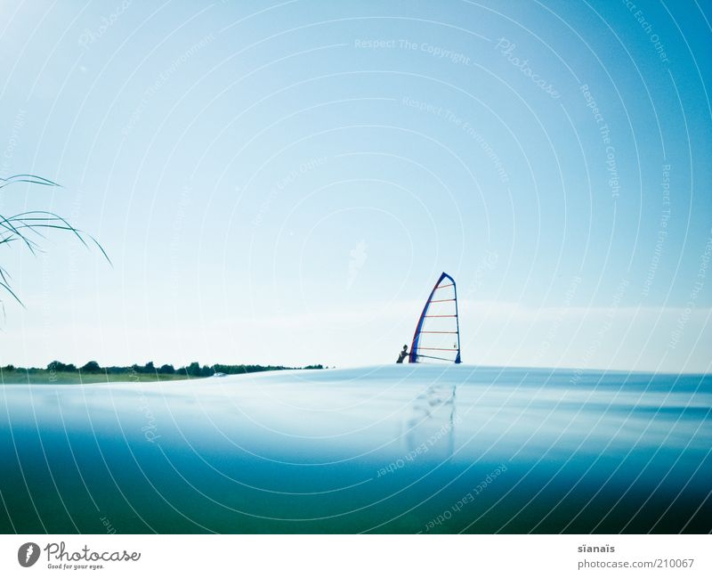 Human being Water Blue Summer Joy Vacation & Travel Calm Sports Lake Contentment Waves Environment Tourism Leisure and hobbies Joie de vivre (Vitality)
