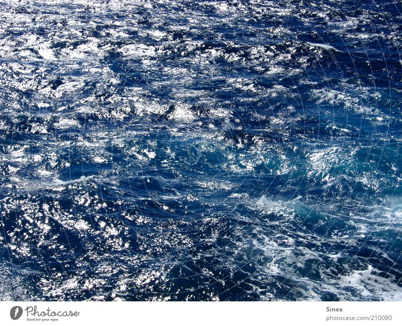 Ocean Blue Summer Vacation & Travel Freedom Contentment Waves Wet Authentic Deep Water Surface of water Deep sea